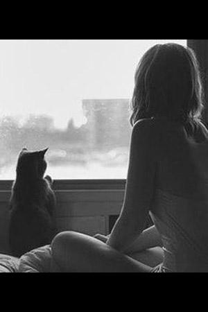 Kings Court Massage - Cat girl
